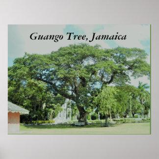 Guango Baum, Jamaika Poster