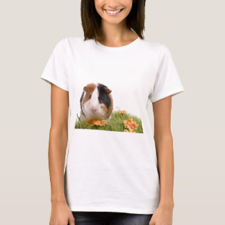 guinea pigs man hat lawn T-Shirt