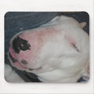 Gute Nacht, schlafen fester, alberner Hund Mousepad