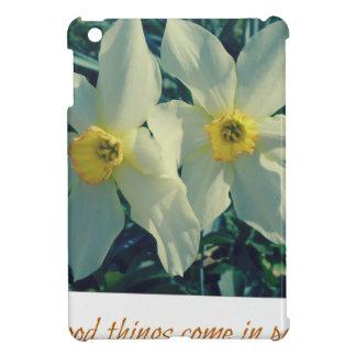 gute Sachen kommen in Paare iPad Mini Schale