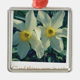 gute Sachen kommen in Paare Quadratisches Silberfarbenes Ornament