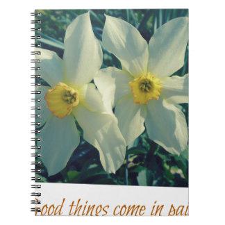 gute Sachen kommen in Paare Spiral Notizblock