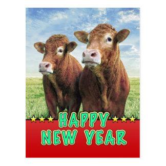 GUTEN RUTSCH INS NEUE JAHR-Hexe die Kuhjungen Postkarte