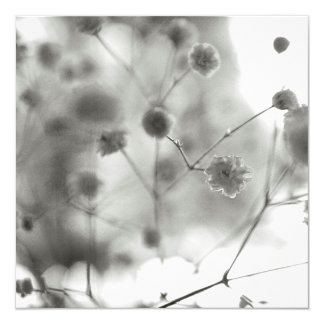 Gypsophila Quadratische 13,3 Cm Einladungskarte
