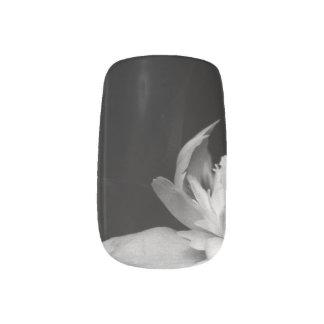 H.A.S. Kunstnagel entwirft, Bilddetail, Blanc Minx Nagelkunst