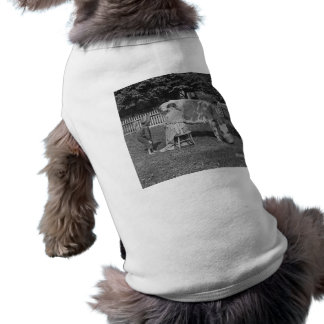 Haben Sie einiges! Vintages Stereoview T-Shirt