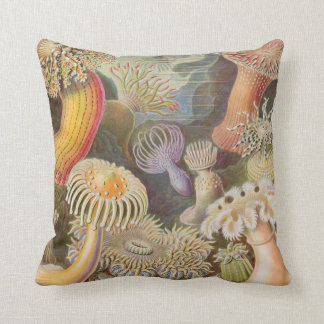 Haekel Entwurf auf Seegurken eines Kissens Kissen
