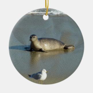 Hafen-Siegel in La Jolla Kalifornien Rundes Keramik Ornament