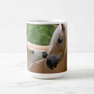 Haflinger Pferde fohlen und die streichelnde Kaffeetasse