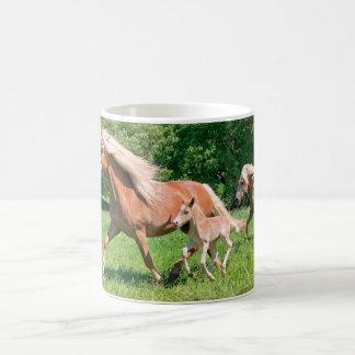 Haflinger Pferde mit niedlichen Fohlen lassen Kaffeetasse