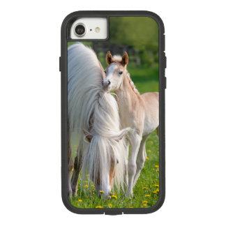 Haflinger Pferdeniedliches Baby-Fohlen mit Case-Mate Tough Extreme iPhone 8/7 Hülle