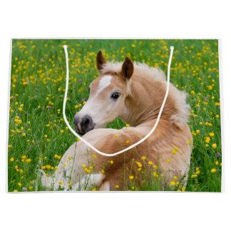 Haflinger Pferdeniedliches Fohlen, das in einem Große Geschenktüte