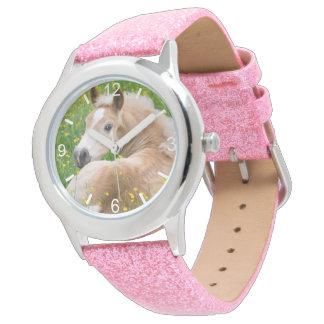 Haflinger Pferdeniedliches Fohlen in der Uhr