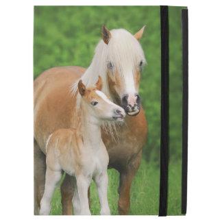 Haflinger Pferdeschützen sich niedliches