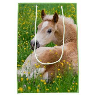 Haflinger Pony-Pferdeniedliches Fohlen im Mittlere Geschenktüte