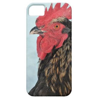 Hahn iPhone 5 Schutzhüllen