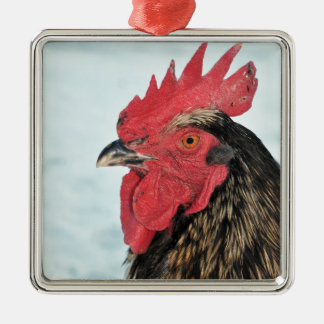 Hahn Quadratisches Silberfarbenes Ornament