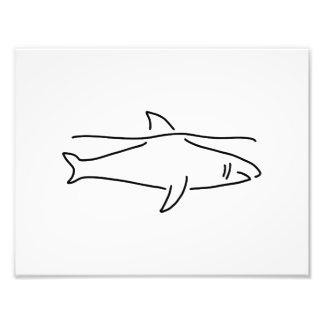 hai haifischflosse meer fotodruck