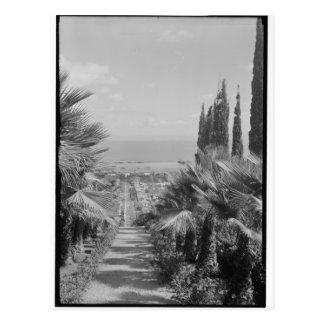 Haifa - vom Karmel, Zwanzigerjahre Postkarte