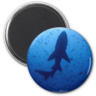 Haifisch-Angriffs-Magnet Runder Magnet 5,7 Cm