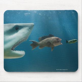 Haifisch, der den Wolfsbarsch jagt Jugendlichen ja Mousepad
