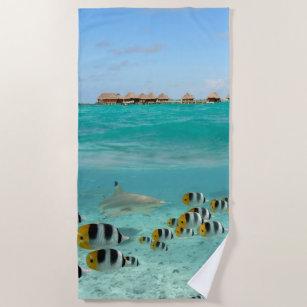 Haifisch, der Fische in tropischer Bora Bora Strandtuch