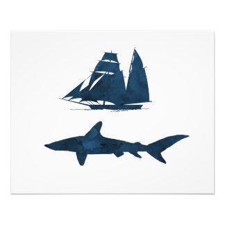 Haifisch Fotodruck