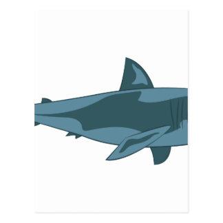 Haifisch Postkarten