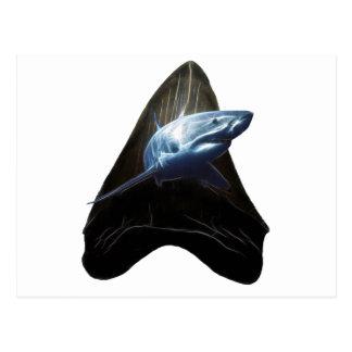Haifisch-Zahn Postkarte