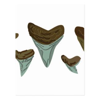 Haifisch-Zähne Postkarte