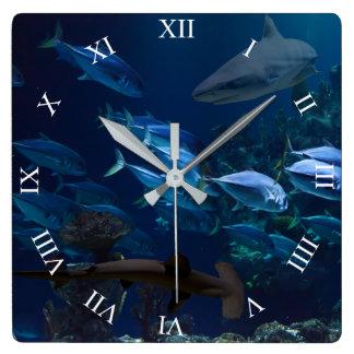 Haifische und Schule der Fische in der blauen Quadratische Wanduhr