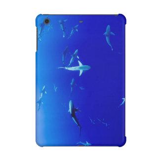 Haifische Unterwasser