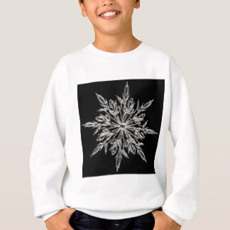 Haken Sweatshirt