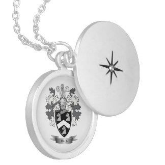 Hall-Familienwappen-Wappen Medaillon