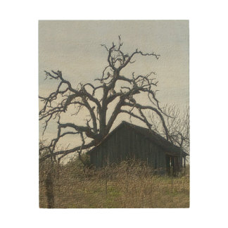 Halle u. Baum Holzdruck