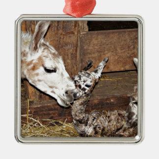 Hallo Baby! Silbernes Ornament