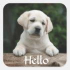 Hallo/hallo Labrador retriever-Hündchen-Aufkleber Quadratischer Aufkleber
