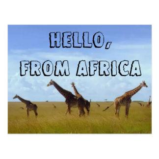 Hallo mit Liebe von Postkarte Afrikas Hakuna
