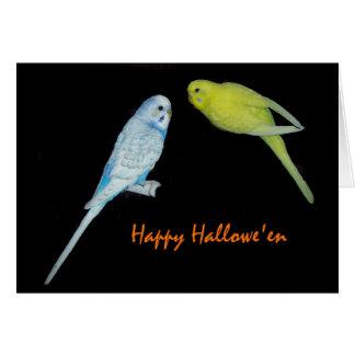 Halloween budgies Karte