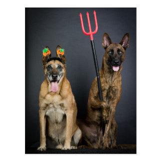 Halloween dogs postkarte