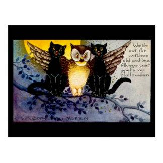 Halloween-Eule und schwarze Katzen Postkarte