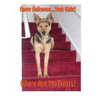 Halloween-Hund und keine Leckereien Postkarte