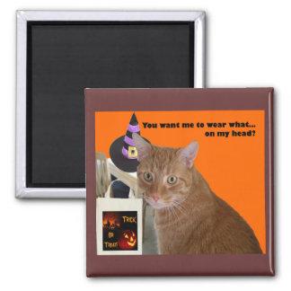 Halloween-Miezekatze - Abnutzung welcher Magnet