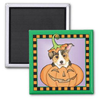 Halloweenpembroke-WaliserCorgi Quadratischer Magnet
