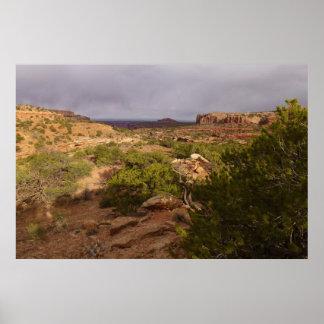 Hals-Frühlings-Spur an Canyonlands Nationalpark Poster