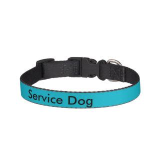 Halten Sie Hundehalsband instand