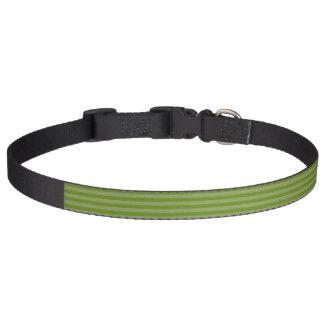 HAMbyWG - Hundehalsband - grüner Streifen Haustierhalsband