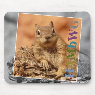 HAMbyWG - Mausunterlage - berühmtes Eichhörnchen Mousepads