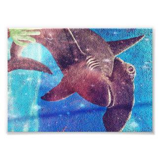 Hammerhai-Haifisch-Malerei Fotodruck