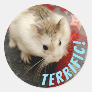 Hammyville - niedlicher Hamster schrecklich Runder Aufkleber